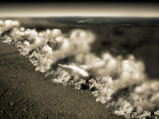 amazon-burns-to-the-ground